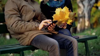 Boy using smartphone and girl holding bunch on maple leaves in the park