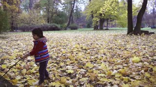 Boy walking with a stick in the park, steadycam shot, slow motion shot at 240fps