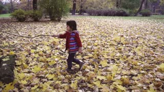 Boy walking with a stick in the park, steadycam shot, slow motion shot
