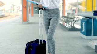 Businesswoman standing with papers and suitcase while talking on cellphone, stea
