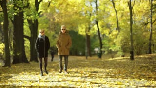 Couple chatting in the autumnal park and having a walk