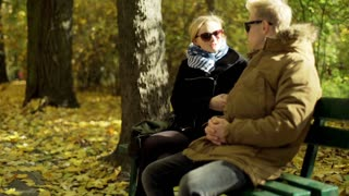 Couple sitting and relaxing on the bench in the autumnal park