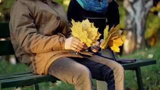 Couple sitting on the bench in the autumnal park and holding bunch of maple leav