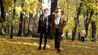 Couple walking in the park and holding hands, slow motion shot