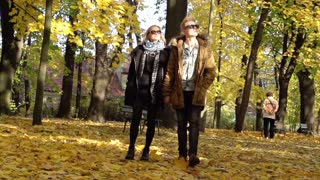 Couple walking in the park and holding hands, steadycam shot, slow motion shot a