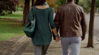 Couple walking in the park and holding hands, steadycam shot