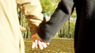 Couple walking in the park and smiling to the camera in the autumnal park