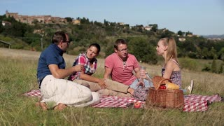 Group of happy friends celebrating with wine on picnic