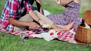 Group of happy friends eating sandwiches on picnic