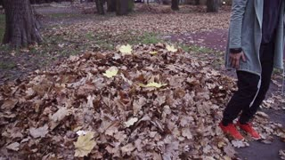 Happy woman falling into leaves, steadycam shot, slow motion shot