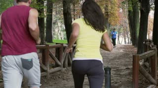 Joggers passing each other on the path, slow motion shot, steadycam shot