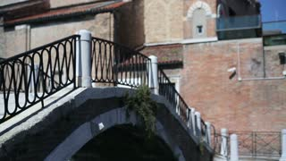 Just married couple walking on stairs in Venice