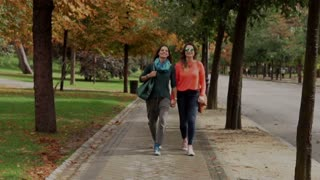 Lesbian walking in the park and holding hands, steadycam shot