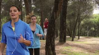 People running between trees, slow motion shot at 240fps, steadycam shot