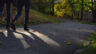 People walking in the autumnal park, slow motion shot