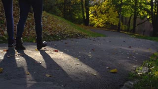 People walking in the autumnal park, steadycam shot, slow motion shot at 240fps
