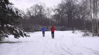 Runners while training in a wintry wood, slow motion shot at 120fps, crane shot