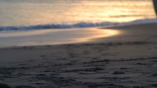 Women holding each other hands and running on the beach, steadycam shot, slow mo