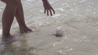 Woman finding shell on the beach, slow motion shot at 60fps