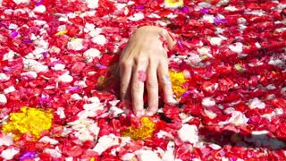 Woman hand touching flowers in the bath, slow motion shot at 240fps