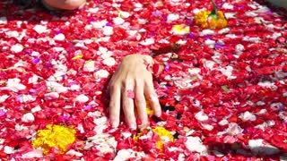 Woman hand touching flowers in the bath, slow motion shot