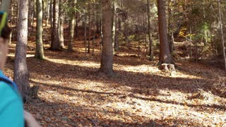 Woman walking in the autumnal forest with the backpack and looking around