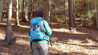 Woman walking in the autumnal forest with the backpack