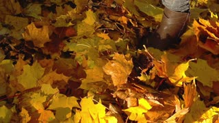 Woman walking on the ground full of leaves in the park, slow motion shot