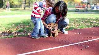 Young mother playing with her son and puppy in autumn park, steadycam