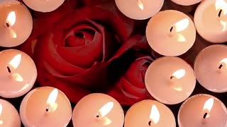 Candles and flowing rose petals