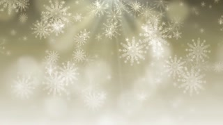 Snow Flakes Background 3