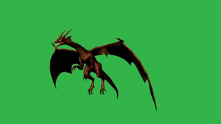 3d animation of Dragon in fly - seperated on green screen