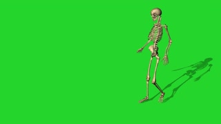 3d animation of skeleton lying on a chair - separate on green screen