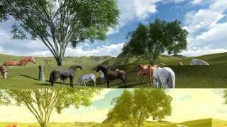 3d animation-scene of Morning Pasture. Herd of horses grazing in a pasture in the morning light