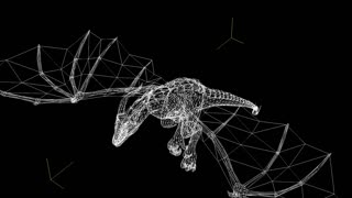 3d animation of wire frame Dragon in fly - separated on black screen