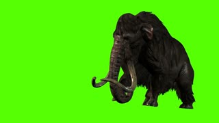 3D Rendering animation -  Mammoth Attacks Side on  Green screen