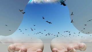 Mixed media of two 3d animation  from Flock of birds flying across the screen and  hand holding globe