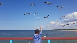 Pretty young woman stands on the pier and feeds the seagulls, gulls are feeded in the flight at the seaside, feeding the birds on the beach, summer at the seaside