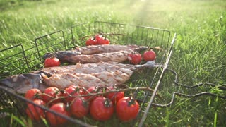 Roasted and grilled scomber lies on the green grass with cherry tomatoes in the sunset light, cooking outside, meals from fish, grill and barbecue