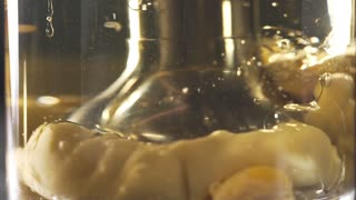 The cook uses blender, making the mayonnaise, close up food, slow motion food, beautiful cooking