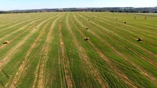 bales of straw at late afternoon. summer landscape- aerial view