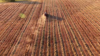 harvester in the field harvests - aerial view