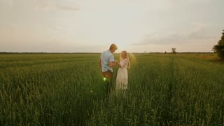 Lovely couple kissing in a meadow at sunset