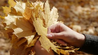 make up a bunch of leaves