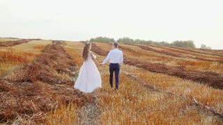 A guy with a girl is walking in a meadow. Romance at sunset.