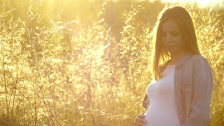 beautiful pregnant woman in the summer nature meadow with in sunset.
