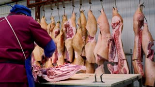 The meat factory is preparing fresh meat for delivery to stores.