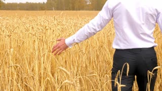 Young man in wheat field.