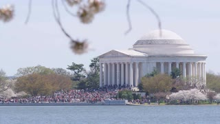 Overlooking the Potomac as tourists gather around Jefferson Memorial during Cherry Blossom Festival, Washington, DC