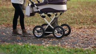 Mother walking with a baby pram (stroller, carriage) in the park. Autumn nature background. Love and family concept.
